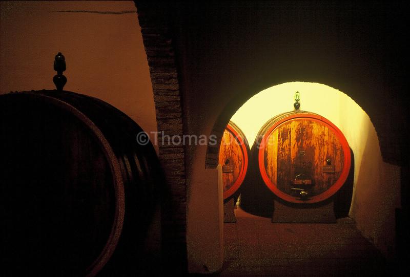 Brunello winery, Tuscany, Italy.
