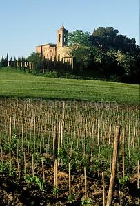 Medieval monastery, near Buonconvento, Italy, Tuscany.