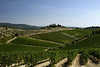 A central Tuscan vino scene.