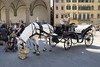 Local transport, the Piazza delle Signoria behind, Florence.