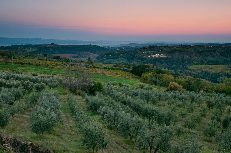 Sunrise looking across the Tuscan countryside.