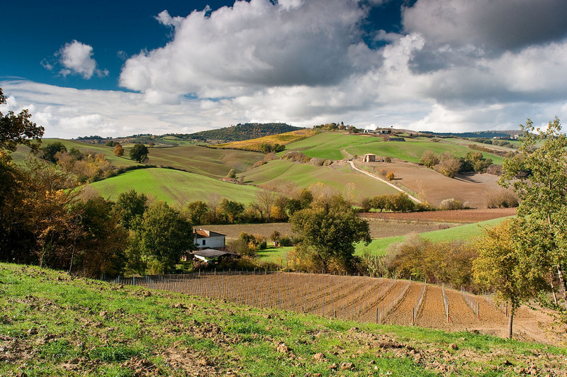 Gorgeous autumn afternoon in Umbria.