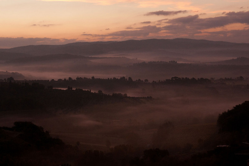 Foggy morning just before sunrise in western Tuscany.