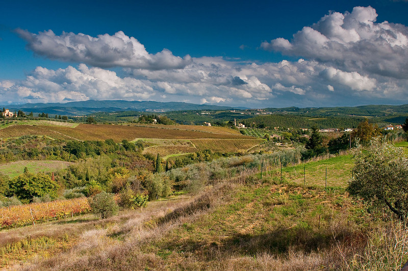 Just another beautiful autumn afternoon in rural Tuscany.