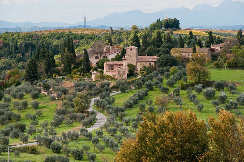One of the many agritourism sites in Tuscany - a beautiful villa; winery; olive orchard along with tourist accommodations.