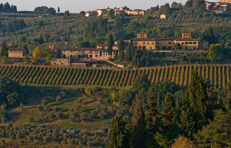 One of the most captivating aspects of the Tuscany landscape is the set of patterns arising from vineyards and olive orchards.