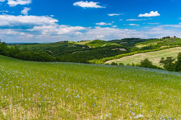 Scenic countryside in Crete Senesi