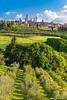 San Gimignano on a sunny spring morning