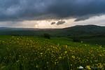 Stormy afternoon around Pienza