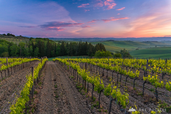 Sunrise at Villa Corsano