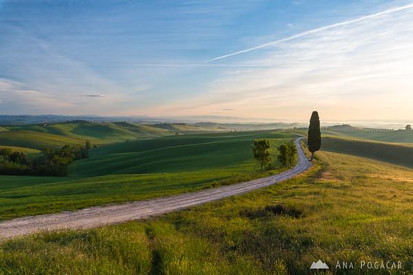 Early morning at Villa Corsano