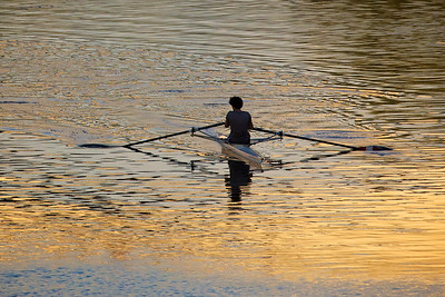 Lone rower on the Arno River, Florence, Italy