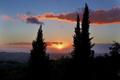 Tuscany Cypress sunset
