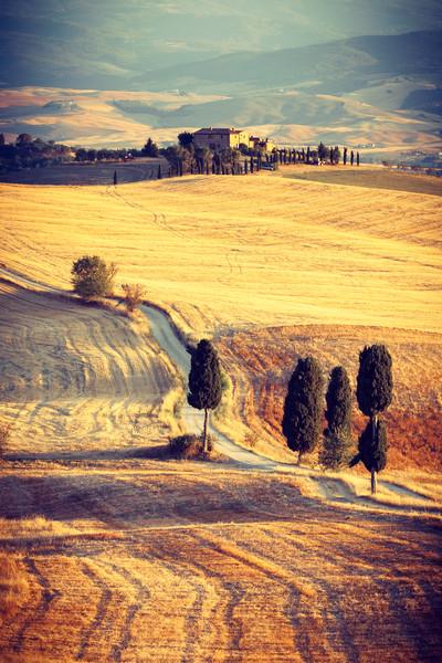 Tuscan impressions