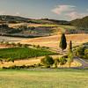 Tuscan country near Pienza, Tuscany, Italy