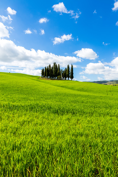 San Quirico d´Orcia, Tuscany, Italy, 2016