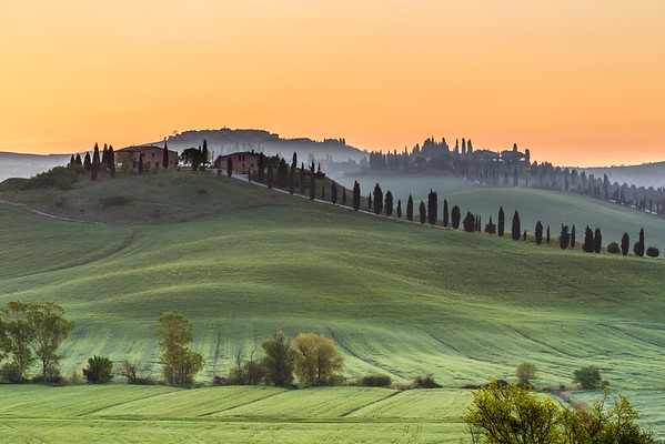 Tuscan curves