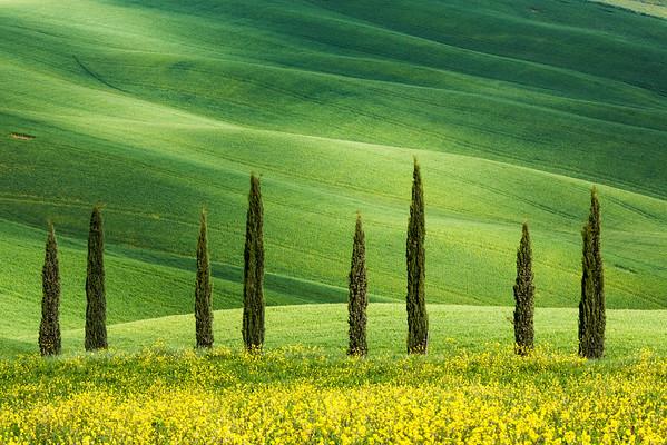 Tuscan shapes, Tuscany, Italy, 2016