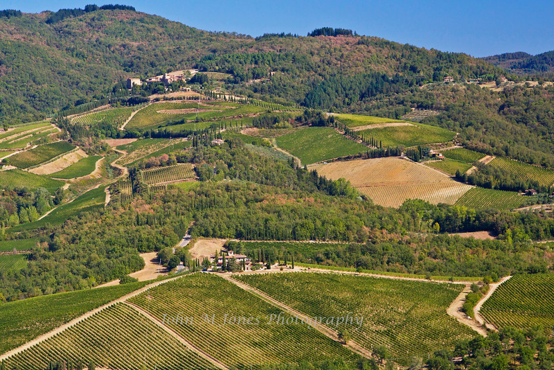 View of vineyards and the small town of Volpaia from Radda, Chianti region of Tuscany, Italy