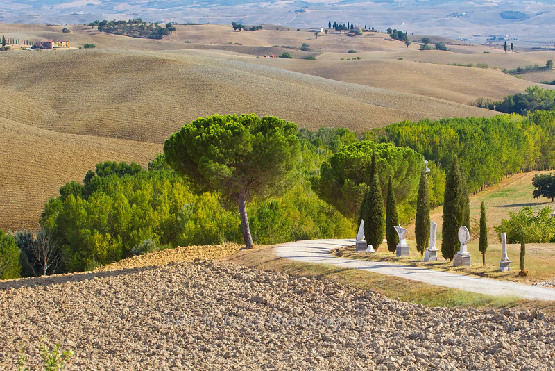 Tuscan countryside in the Val d'Orcia, Siena, Italy