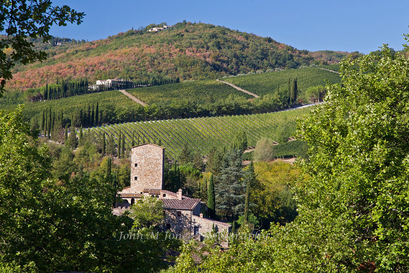 Countryside view of vineyards and wineries near Radda, Chianti region of Tuscany, Italy