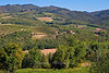 View of countryside and vineyards from the town of Radda, Chianti region of Tuscany, Italy