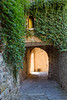 Ivied wall over narrow street in Montefioralle, Tuscany, Italy