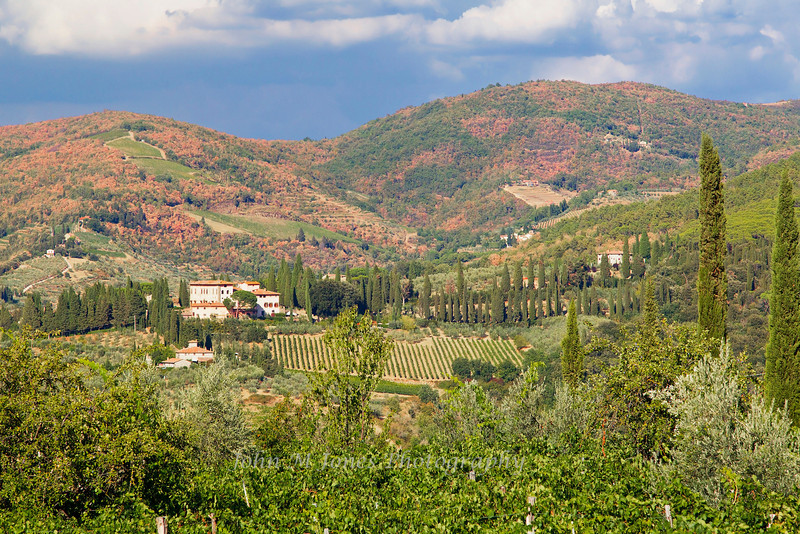 The Vignamaggio winery and vineyards are in the heart of Chianti Classico country, Tuscany, Italy