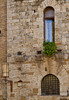 Narrow window, San Gimignano, Tuscany, Italy