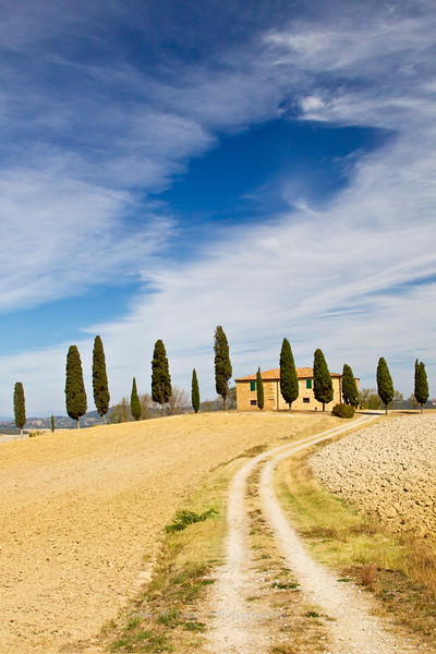 Villa and cypress trees near Pienza, Tuscany, Italy