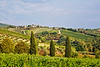 Tuscan countryside and vineyards, Chianti region of Tuscany, Italy