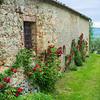 Montestigliano, Italy