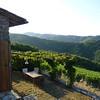 Honeymoon in Italy 100