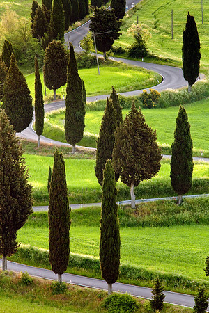 Famous serpentine road near  Monticchiello in Tuscany