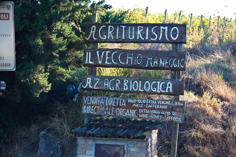 We arrived at Il Vecchio, a working organic farm a mile or two from San Gimignano.