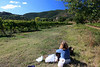 . . . we found a spot in a nearby vineyard overlooking the Abbey to have a picnic.