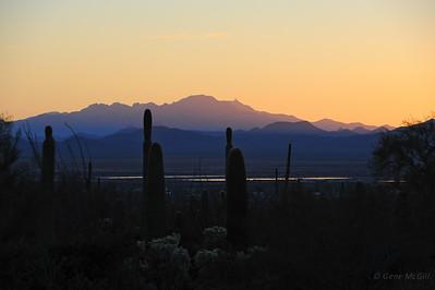 Kitt Peak from Saguaro National Park