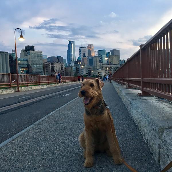 Stone Arches Bridge, Minneapolis