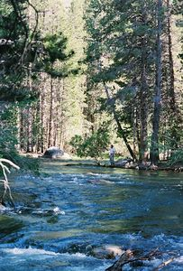 7/5/05 Robinson Creek near Lower Twin Lakes Campground. Toiyabe National Forest, Eastern Sierras, Mono County, CA