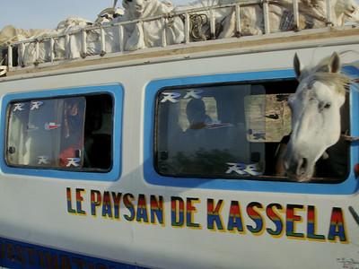Two Women Can Make A Market (Mali)