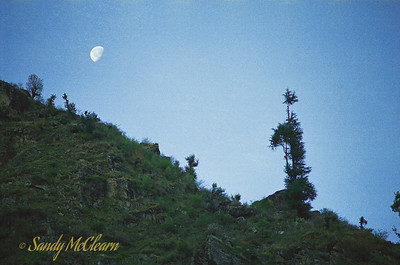 This was taken on the road just up the mountain from Ponda Camp, looking up the mountainside at the moon.