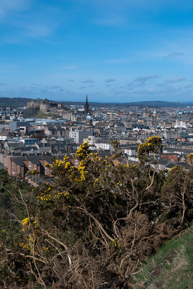 A view of the city from along our hike up Arthur's Seat