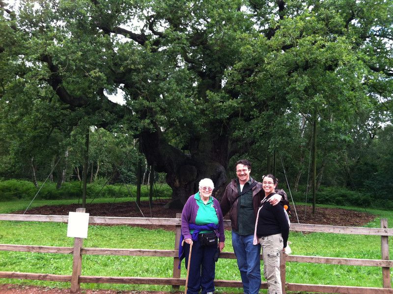 4 July 2012: The Major Oak in Sherwood Forest