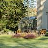 Patio & Conservatory area