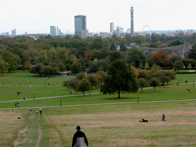 Another view from Primrose Hill.