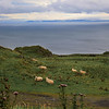 Torr Head with Mull of Kintyre in the distance