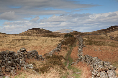The walled path from Hafod-dywyll to Llyn Gwernan