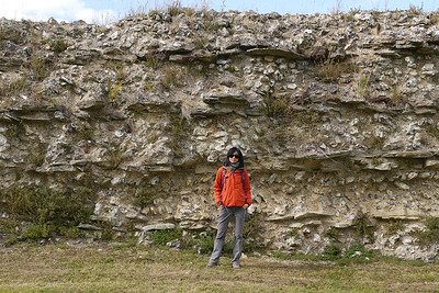 Roman Wall Silchester