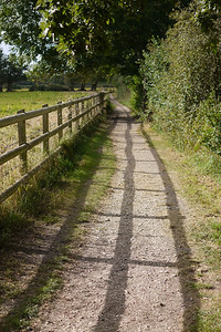 Silchester Path