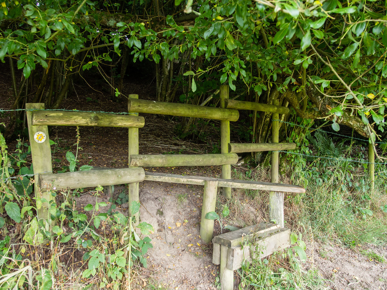 Stile into the Bracken